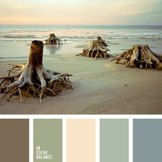beige, beige and green, marsh color, green and brown, brown, monochrome color palette, subtle colors, subtle colors for the wedding, shades of green, shades of brown, shades of blue and green, a palette of colors of the marsh, pastel shades, the color scheme.