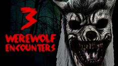 Dogman Encounters, 300 Workout, The Last Story, Australian People, Get Over It, Werewolf, Occult, Beast, Darth Vader