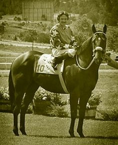 Pie In The Sky, br, 77, Easy Jet X Miss Jelly Roll X Roulade (TB), SI-101, $616,328, 1979 All American Fut., 1979 Champion 2yo Colt, Breeder, Joe McDermott, Madisonville Tx., Euthanized 12-20-2001