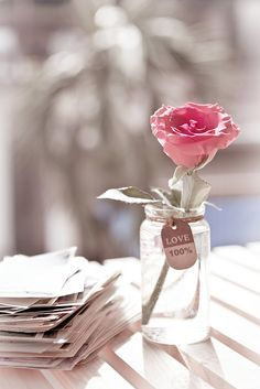 Shabby Chic | A rose for you with love