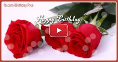 People came here with these terms: Birthday gift ideas, Happy Birthday Romantic Song birthday romantic music video and song free birthday cards, birthday videos. Birthday Wishes For Women, Birthday Wishes For Boyfriend, Happy Birthday Wishes Cards, Happy Birthday Gifts, Very Happy Birthday, Birthday Greetings, Teacher Birthday Gifts, Diy Birthday Banner, Free Birthday Card