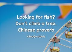 Quotes about  Looking for fish? Don't climb a tree. Chinese proverb with images background, share as cover photos, profile pictures on WhatsApp, Facebook and Instagram or HD wallpaper - Best quotes