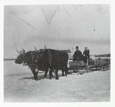 Going to Church in Winter | saskhistoryonline.ca