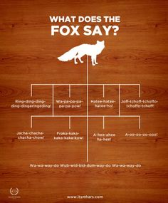 Um what does that damn fox really say !!