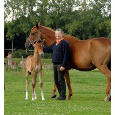 Filippus paardenmelkerij vakantiehoeve ponykamp