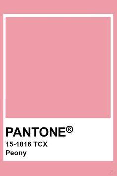 Pantone Colour Palettes, Paint Color Palettes, Colour Pallete, Colour Schemes, Pantone Color, Pantone Swatches, Color Swatches, Warm Colors, Colours