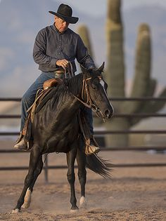 5 common mistakes while starting colts. Fantastic article for colt starting and even just getting to know a new horse