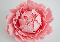 Image result for peonies tutorial fondant