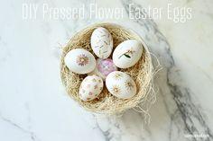 DIY Pressed Flower Easter Eggs