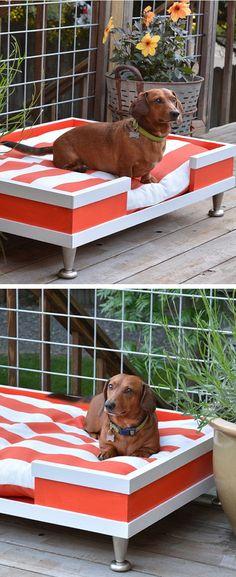 DIY Modern Pet Bed  #puppied