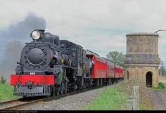 Net Photo: 608 Steam Incorporated Steam at Near Putaruru, New Zealand by John Russell News Around The World, Around The Worlds, Train Pictures, Train Engines, Tornadoes, Water Tower, Steam Engine, Steam Locomotive, Train Station