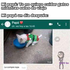 Funny Spanish Memes, Spanish Humor, Funny Jokes, Mexican Memes, Disney Jokes, Barbie, We Bare Bears, Cat Drawing, Animal Memes