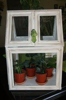 terrarium how-to out of picture frames! for when you gotta kitty-proof your plants!