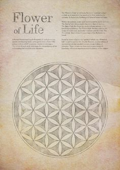 Flower of life -> Great tools for light-workers.. Flower of Life T-Shirts, V-necks, Sweaters, Hoodies & More ONLY 13$ EACH! LIMITED TIME CLICK ON THE PIC