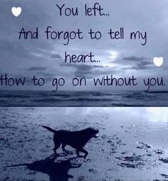 Losing a pet quotes cat so true ideas Dog Poems, Dog Quotes, Animal Quotes, Pet Loss Quotes, I Love Dogs, Puppy Love, Animals And Pets, Cute Animals, Pet Loss Grief