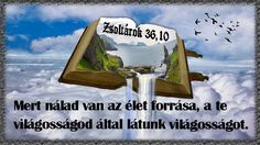 Merida, Faith, Quotes, Quotations, Loyalty, Quote, Shut Up Quotes, Believe, Religion