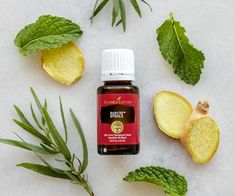 Support a healthy digestion with Young Living Digize essential oil. Fennel Essential Oil, 100 Essential Oils, Patchouli Essential Oil, Essential Oil Blends, Digize Essential Oil Young Living, Young Living Digize, Young Living Oils, Henna Designs, Living Essentials