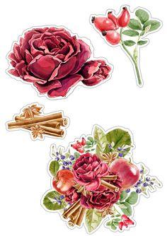 Высечки с осенними розами и корицей❤В прикрепленном архиве все картинки для распечатки в отличном качестве (4 шт.)#картинки@scrapidea Bubble Stickers, Craft Stickers, Scrapbook Stickers, Cute Stickers, Scrapbook Paper, Free Watercolor Flowers, Watercolor Cards, Box Template Printable, Printable Stickers