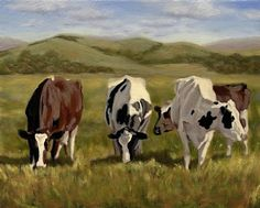 "Dandilion Harvest Holsteins by denise rich Oil ~ 16"" x 20"""