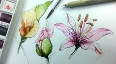 Download video: Pen & Ink Drawing Tutorial | How to draw flowers ...
