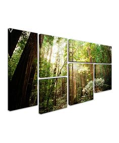Look at this Ariane Moshayedi 'Muir Woods' Gallery-Wrapped Canvas Set on #zulily today!