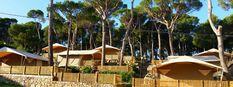 Interpals, Camping Costa BravaWelkom - Interpals, Camping Costa Brava Costa, Camping, Patio, Outdoor Decor, Home Decor, Architecture, Court Yard, Room Decor, Terrace