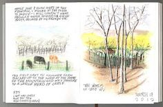 nature sketchers - like urban sketchers, but with nature