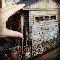 Dollhouse[おばさんの小さな多肉小屋]より #Dollhouse #ドールハウス #miniature #ミニチュア #1/16 scale #多肉植物 #樹脂粘土 #小屋