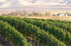 Six Great American Wine Country Harvest Getaways | Travel News from Fodor's Travel Guides