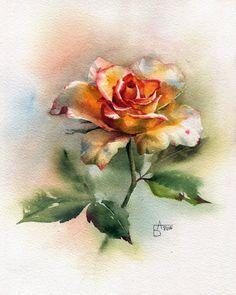 (7) Gallery.ru / Фото #5 - Но больше всех люблю, конечно, розу... - Anneta2012