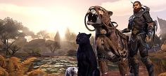 """If a new class is added in ESO, How about a pet-focused one? Code """"SW8SNS"""" to buy eso gold cheap on safewow"""