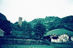 The view from our winery. Picture taken by Conny Eisfeld from #Lomoherz.