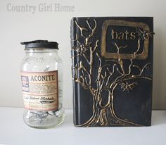 A few weeks ago my mother found these books on Pinterest from thesuper awesome   Lindsey at BETTER AFTER   She has the coolest blo...