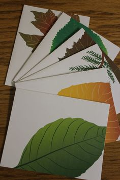 Leaf Notecards by TerriWilhelmDesigns on Etsy, $20.00