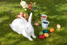 Stock photo: Easter Tradition © eZeePics Studio from $1.50