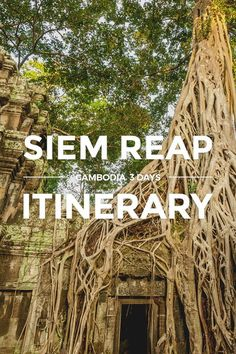 Siem Reap Itinerary Guide https://www.detourista.com/guide/siem-reap-itinerary-3-days-off-beat/ ✈ Plan a budget trip & itinerary in Siem Reap, Cambodia. This easy 3-day DIY guide takes you on an off-beat temple run in Angkor, away from the tourist crowds. Feel free to re-pin if you like the tips posted. Thanks for sharing ❤️ #detourista