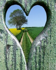 Love-ly View | Content in a Cottage  Hear shape view through a fence