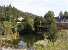 Springdale, Washington