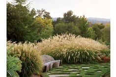 Northern California Garden Weaves In Couple's Cultural Traditions | California Home + Design #landscaping