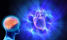 Genetic link between heart and neurodevelopmental disease - http://bioengineer.org/genetic-link-between-heart-and-neurodevelopmental-disease/
