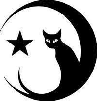 Nice Star Tattoos With Image Tattoo Designs Especially Moon Star Tattoo Picture 1 Nice Star Tattoos With Image Tattoo Designs Especially Moo. Moon Star Tattoo, Star Tattoos, Moon Tattoos, Celtic Tattoos, Tribal Tattoos, Moon Tattoo Designs, Cat Silhouette, Cat Drawing, Moon Drawing