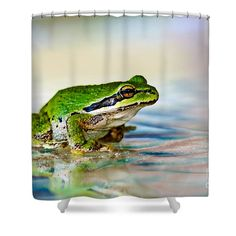 The Green Frog Shower Curtain for Sale by Robert Bales