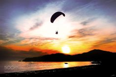 The Paraglider by alpcem