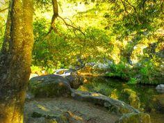 Um bocadinho do paraíso: o Poço das Caldeiras em Loureda  (de uma banda e da outra Cabreiro)  Arcos de. Coordenadas GPS: 41.941061 -8.427773