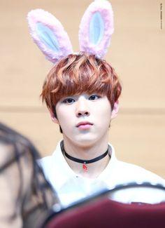 160213 UP10TION Daegu FansigningWooshinCr:  My Dear,WOOSHIN  Do not edit