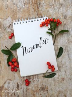 November with pyracantha Happy New Month Quotes, New Month Wishes, Seasons Months, Months In A Year, November Backgrounds, November Wallpaper, Winter Wallpaper, November Images, Calendar Pictures