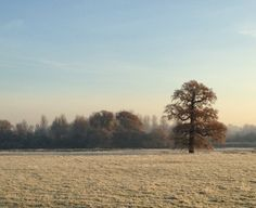 Frosty, but fabulous, the view of our Capability Brown landscaped grounds from Stapleford Park.  http://www.staplefordpark.com/house-estate/
