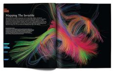 Seed magazine infographic
