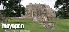 Mayapan, meaning Banner of the Mayas, is considered the last great Maya capital, dating back to the beginning of the common Era and reaching its golden age in the Postclassic period. It is believed that this city once had a population of 12,000 inhabitants.