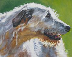 Google Image Result for http://images.fineartamerica.com/images-medium-large/irish-wolfhound-beauty-l-a-shepard.jpg